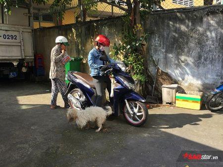 Doi truong doi bat cho tha rong: 'Nhieu chu cho chui boi, tru eo con chung toi khi sinh ra bi di tat…' - Anh 6