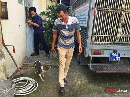 Doi truong doi bat cho tha rong: 'Nhieu chu cho chui boi, tru eo con chung toi khi sinh ra bi di tat…' - Anh 8