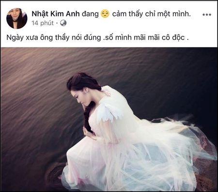 Truoc nghi an da ly hon chong, Nhat Kim Anh noi gi? - Anh 3