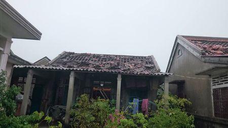 Hue: Hang tram nha dan tan hoang sau loc xoay kinh hoang trong dem - Anh 5