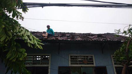 Hue: Hang tram nha dan tan hoang sau loc xoay kinh hoang trong dem - Anh 8