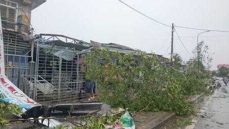 Hue: Hang tram nha dan tan hoang sau loc xoay kinh hoang trong dem - Anh 9