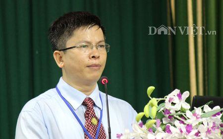 Co cau giong mia Viet Nam 'loan' nhu no hoa - Anh 1