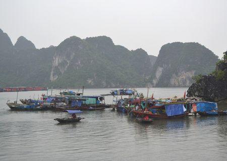 Bao so 10: Quang Ninh ra cong dien khan, cam tau thuyen ra khoi - Anh 3