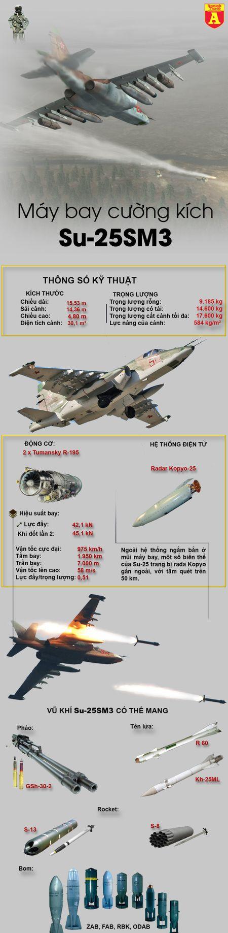 Noi danh tai Syria khien Nga quyet dinh trang bi sat thu diet tang Su-25SM3 - Anh 2