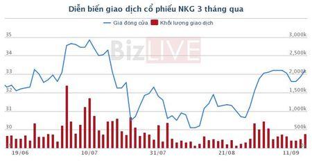 Thep Nam Kim mo room cho khoi ngoai len 100% - Anh 1
