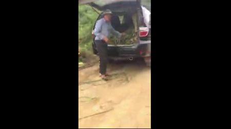 Choang vang voi cach nong dan Son La dung xe sang de cho co cho bo - Anh 1