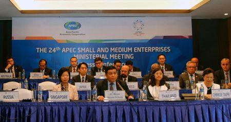 Nhieu cam ket ho tro cho DNNVV trong APEC - Anh 1