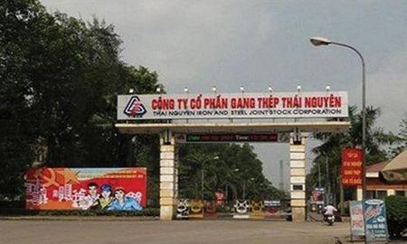 Dinh gia Nha may Gang thep Thai Nguyen giai doan 2 - Anh 1