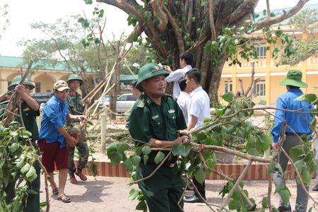 Sau sieu bao, Thu tuong chi dao Nghe An vao cuoc quyet liet giup dan - Anh 2