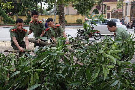 Luc luong Cong an khan truong khac phuc hau qua bao so 10 - Anh 2