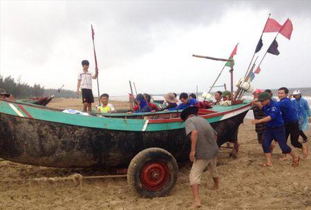 Hon trieu DVTN tham gia tinh nguyen he 2017 - Anh 1