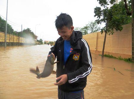 Hau Bao so 10: Sinh vien Lao quang chai giua pho bat ca 'khung' - Anh 13