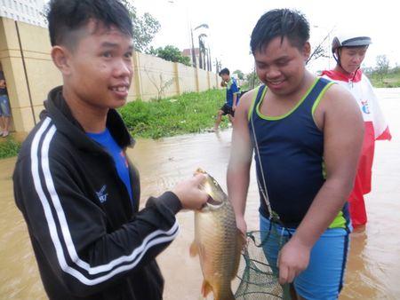 Hau Bao so 10: Sinh vien Lao quang chai giua pho bat ca 'khung' - Anh 14