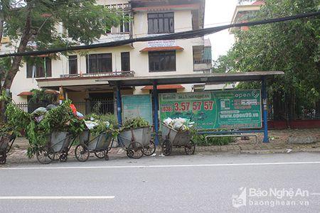 Hon 450 cong nhan thanh pho Vinh gong minh xu ly rac sau bao - Anh 9
