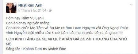 Co con dau ngoan hien the nay, de gi bo me chong Nhat Kim Anh dong y cho con trai ly hon - Anh 2