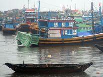 Cấm tàu thuyền của đảo Phú Quý ra khơi