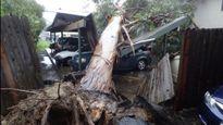 Bão lớn càn quét California