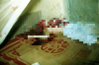 Trở lại vụ giết người ở tiệm vàng Kim Sinh: Tìm hang sói