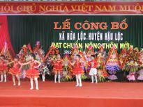 Thanh Hóa: Xã Hòa Lộc đạt chuẩn nông thôn mới