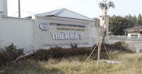 Cần Thơ: Truy tố đại gia thủy sản Tòng 'Thiên Mã'