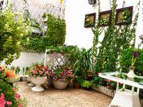 Khâm phục mẹ Việt biến ban công 15m2 thành vườn hoa đẹp như cổ tích