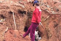 Kiểm điểm, làm rõ trách nhiệm vụ phá rừng tại Thanh Hóa