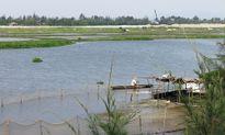 Quảng Nam: 850 tỉ đồng cho dự án nạo vét sông Cổ Cò