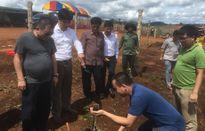 Nafoods hợp tác chiến lược với đối tác Lào và tìm đối tác thâm nhập thị trường châu Âu