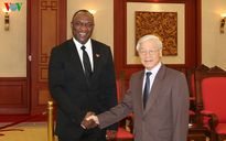 Tổng Bí thư tiếp Chủ tịch Thượng viện Cộng hòa Haiti