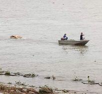 Hải Phòng: Tìm thấy thi thể ngư dân sau 1 tuần mất tích