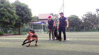 Võ sư karate mở trường dạy chó