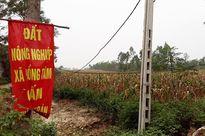 Giao đất sai ở xã Đồng Tâm, 14 cựu cán bộ bị truy tố