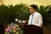Chủ tịch UBND TP Nguyễn Đức Chung: Chưa từng đặt vấn đề trồng lại cây xung quanh hồ Hoàn Kiếm