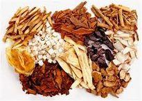 Các vị thuốc ngâm tẩm rượu thường dùng (kỳ 2)