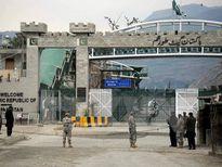Binh sỹ Afghanistan tiêu diệt 77 phiến quân trong 24 giờ qua