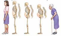 Sự lão hóa của các bộ phận trong cơ thể diễn ra như thế nào?