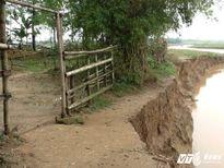 Hai cán bộ Sở Giao thông vận tải Nghệ An bị lũ cuốn trôi