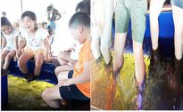 Nguy cơ lây nhiễm bệnh từ massage cá
