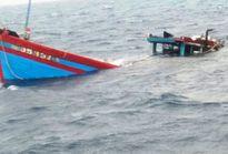 Cứu được 6 thuyền viên, phát hiện 1 thi thể