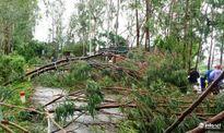 Phải chi ít nhất 55 tỷ đồng để sửa đường sau bão số 2