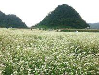 Hà Giang khắc phục những tồn tại nhằm đẩy mạnh phát triển du lịch