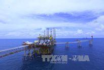 Tập đoàn Dầu khí Việt Nam cần xây dựng niềm tin