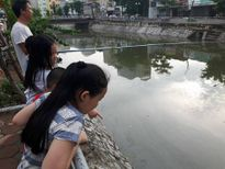 """Nhiều cá được câu ở """"dòng sông chết"""""""