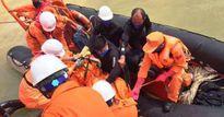 Thêm nhiều tàu cá của ngư dân tìm kiếm thuyền viên mất tích