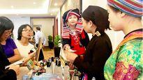 Hà Giang tìm cách thu hút du khách TPHCM