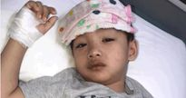 Bố mẹ Hà Nội vội vã tránh sốt xuất huyết cho con giữa mùa dịch