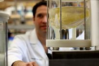 Những công nghệ đang tạo cuộc cách mạng trong ghép tạng