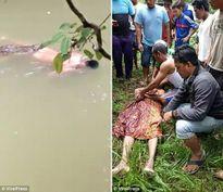 Cá sấu kéo người xuống sông, một ngày sau đem trả thi thể?