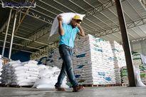 Campuchia tăng cường xuất khẩu gạo